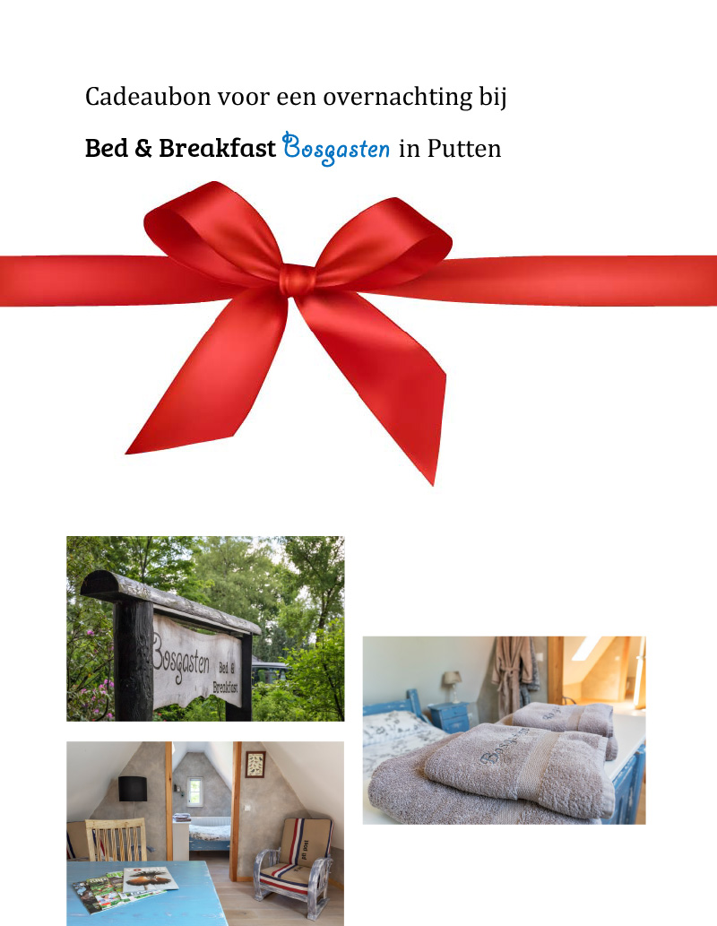 Waardebon_Bed_and_Breakfast_2